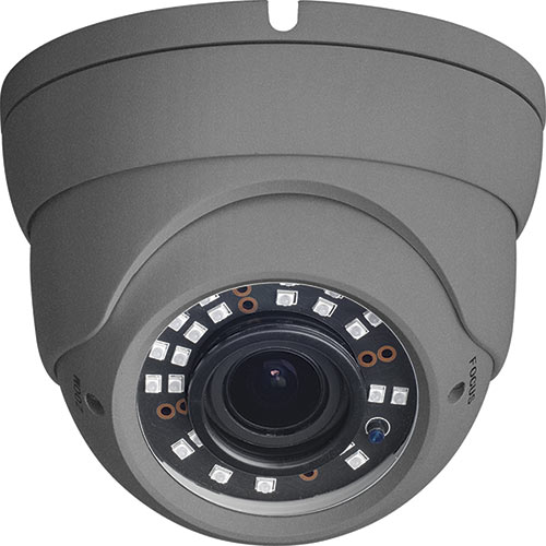 W Box 2MP Motorized IR Eyeball Camera, Grey