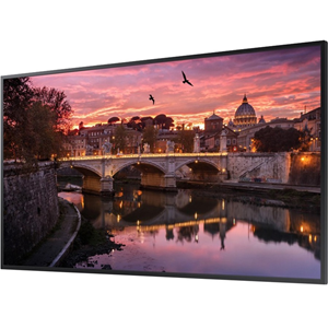 55-Inch Commercial 4K UHD LED LCD Display (No Wi-Fi)