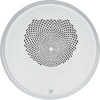 Speaker White Ceiling